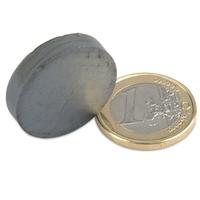 Scheibenmagnet 25 mm (für Magnetblumen)