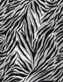 Stoff, Timeless Treasures Zebra Wild